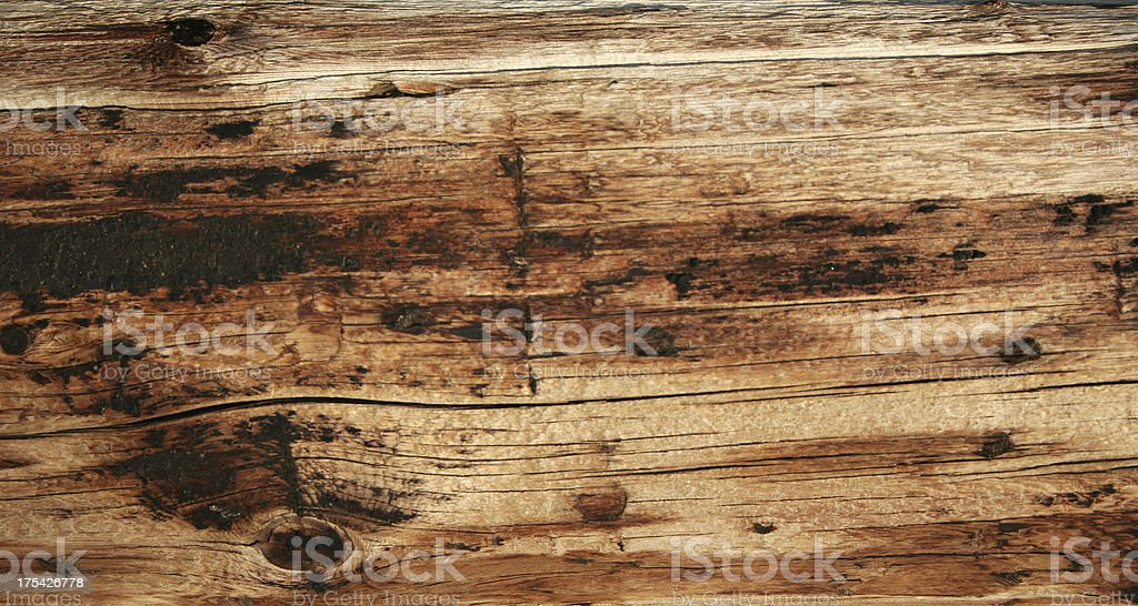 Texture - Knotted Wood royalty-free stock photo