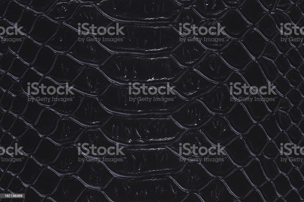 texture of a snakeskin royalty-free stock photo