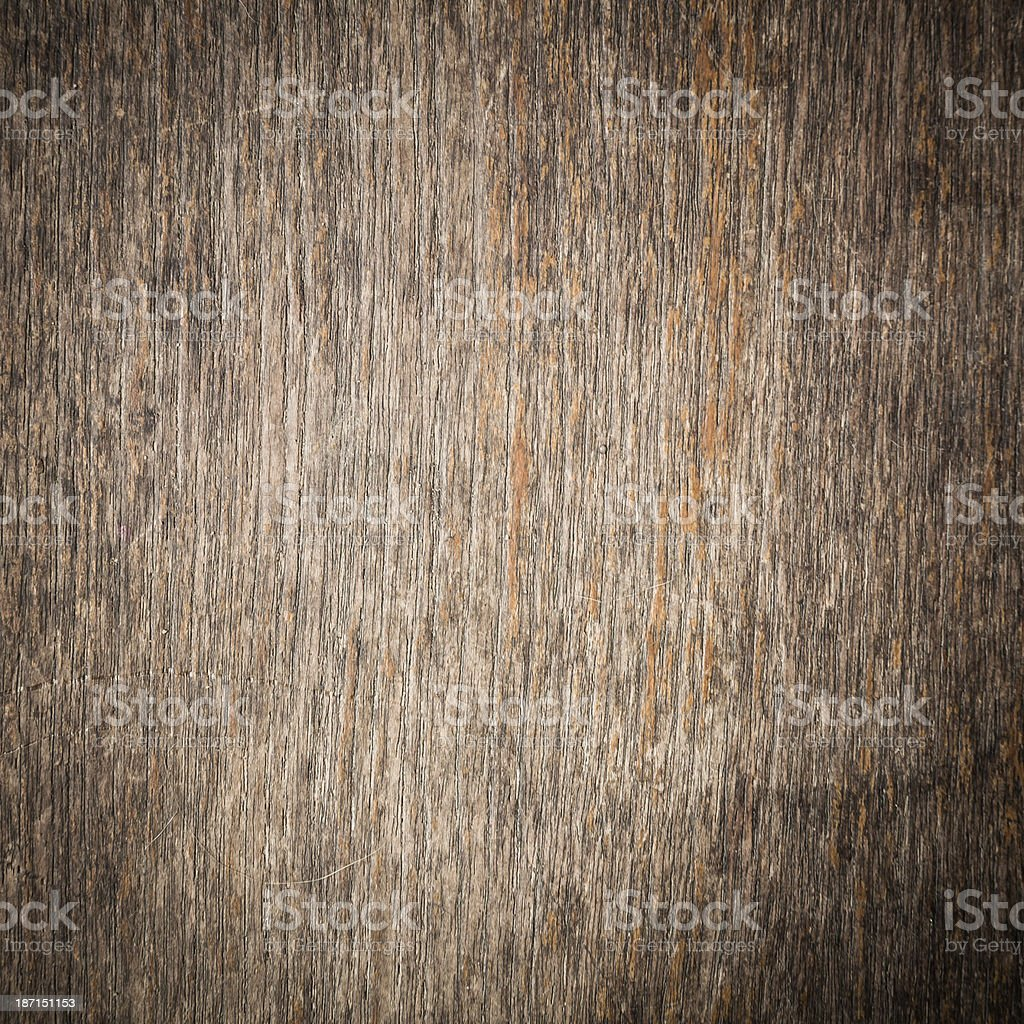 texture of bark wood background stock photo