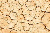 texture of dry crackled soil dirt or earth during drought.