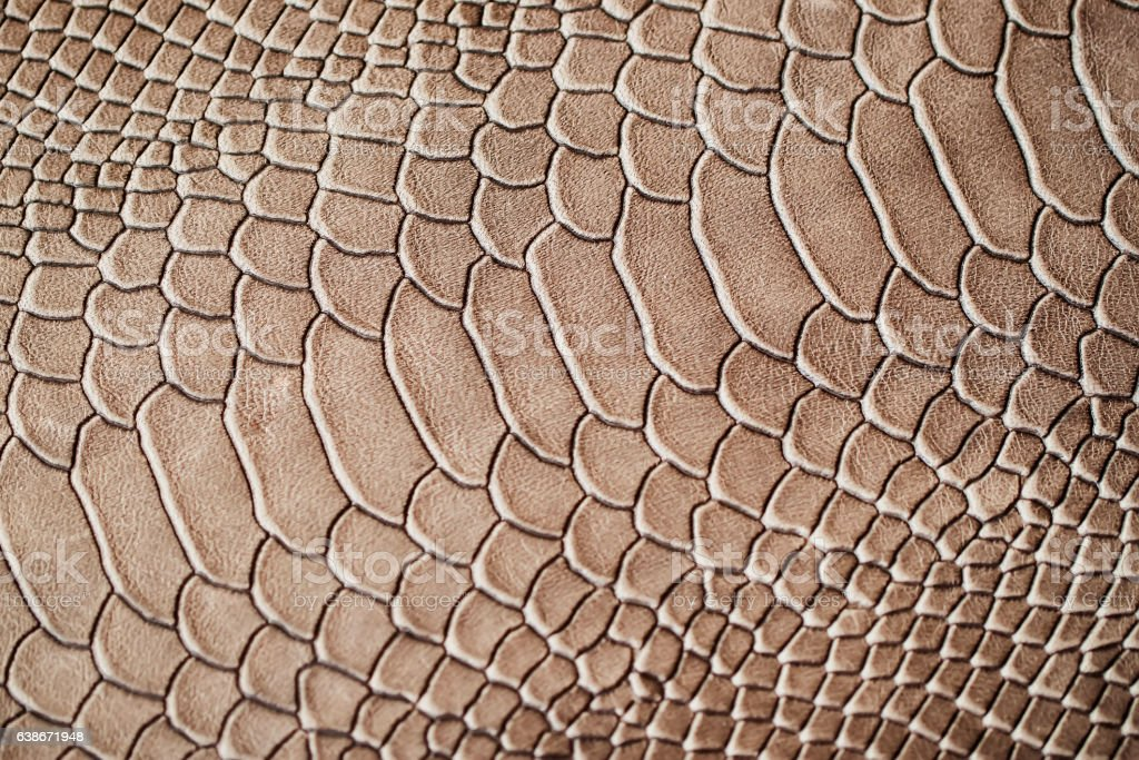 Texture of exotic genuine leather close-up, embossed under the stock photo