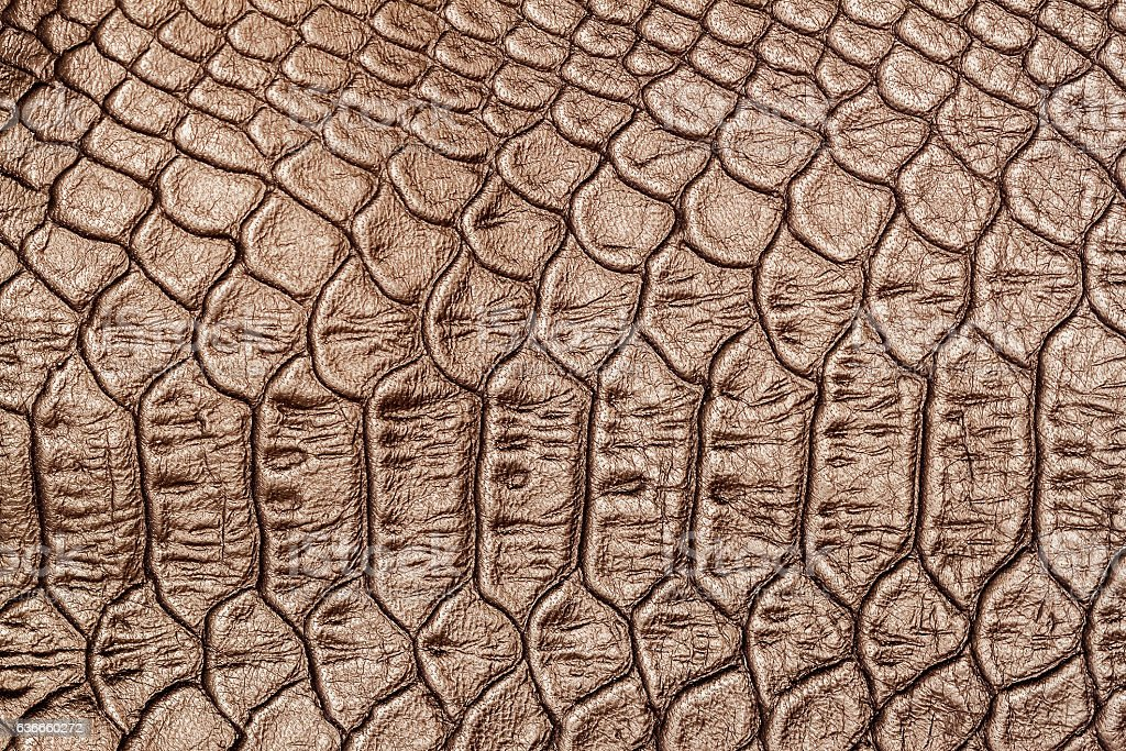 Texture of genuine leather close-up, embossed under the squama stock photo