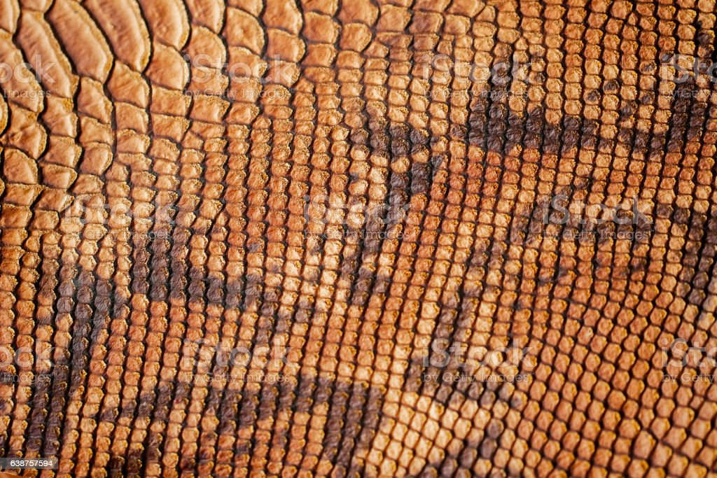 Texture of genuine leather close-up, with embossed scales of...