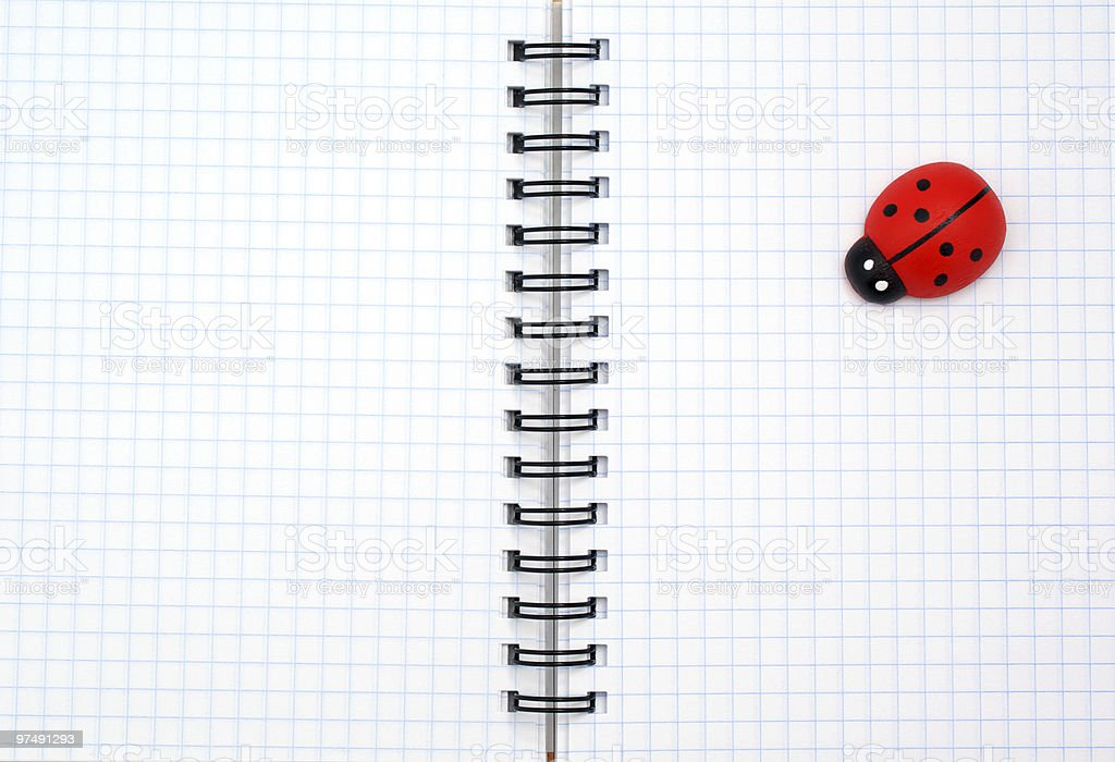 Texture of note pad and ladybug royalty-free stock photo