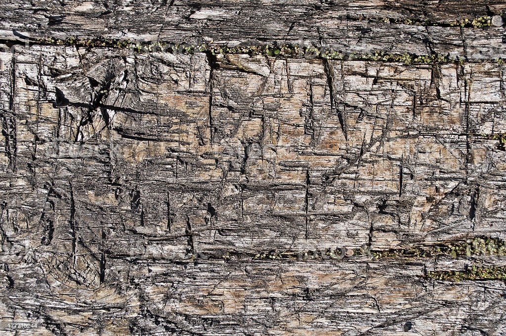 Texture of old rugged boards royalty-free stock photo