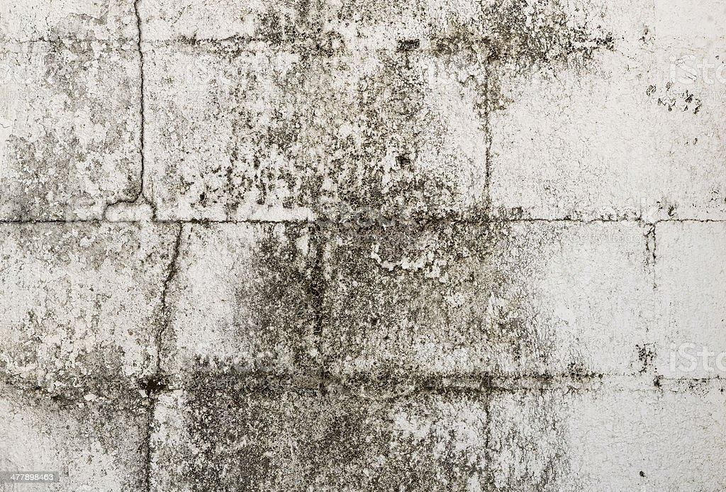 Texture of painted wall royalty-free stock photo