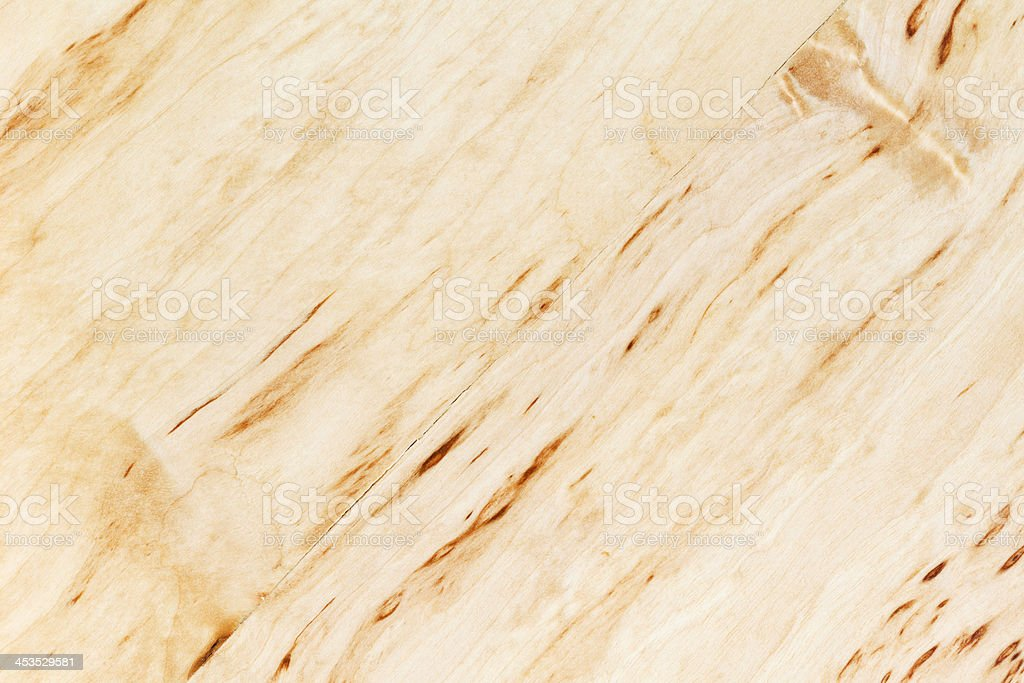 texture of silver birch burl royalty-free stock photo