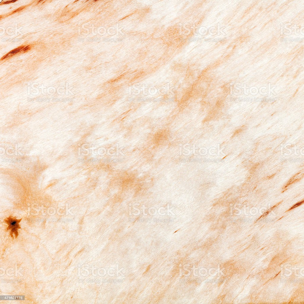 texture of silver birch wood royalty-free stock photo