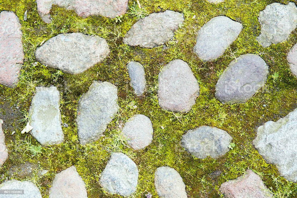 Texture of stones in the grass stock photo