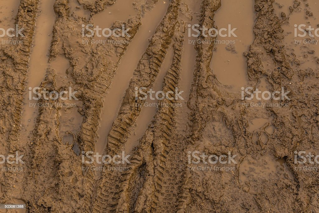 Texture of wet brown mud with bicycle tyre tracks stock photo