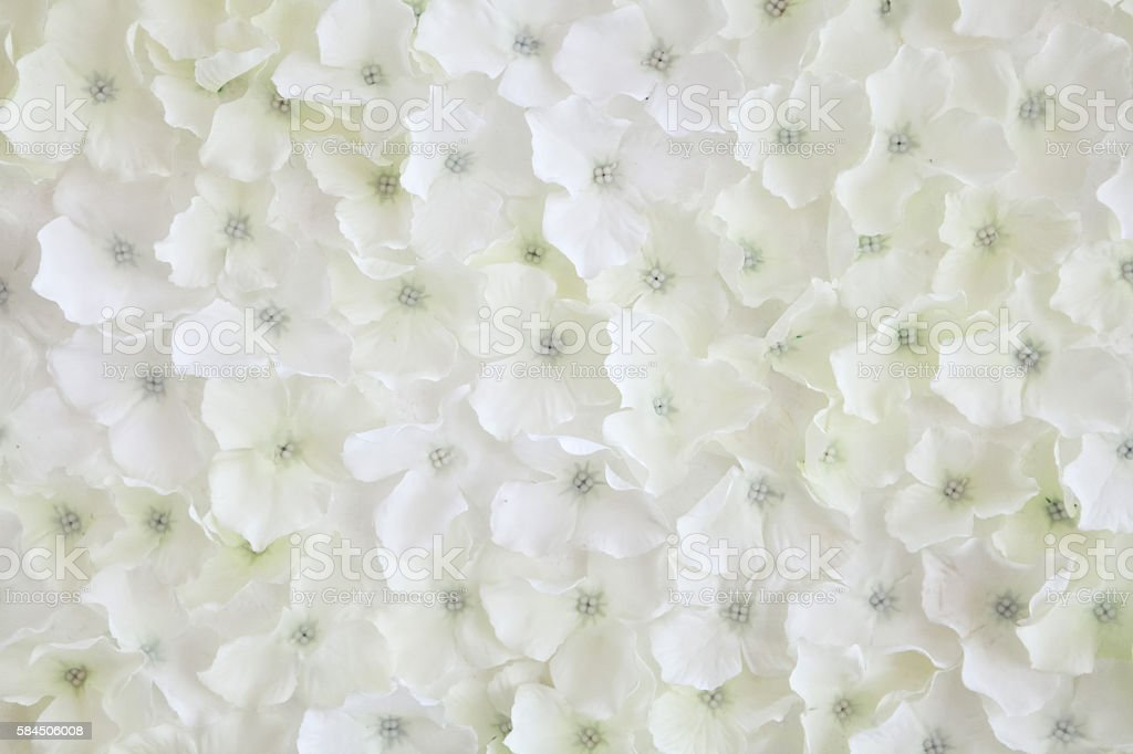 Texture of white artificial flower stock photo