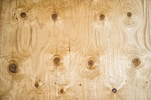 Texture of wood surface with nodules