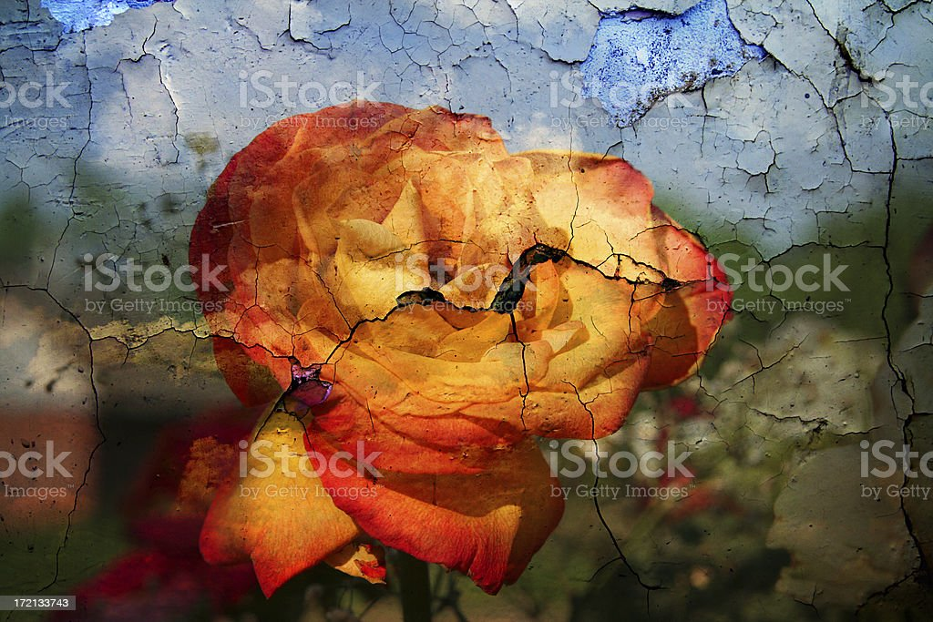 Texture with painting royalty-free stock photo