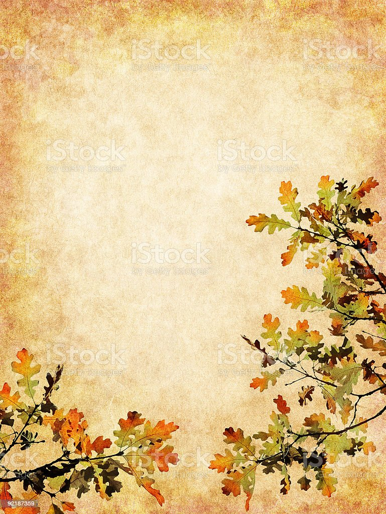 Textured Autumn Leaves royalty-free stock photo