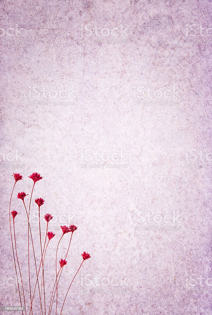 Textured background with flowers royalty-free stock photo