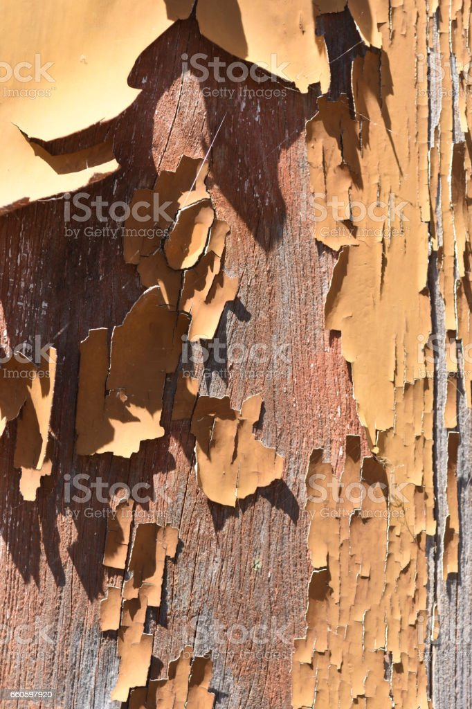textured stock photo