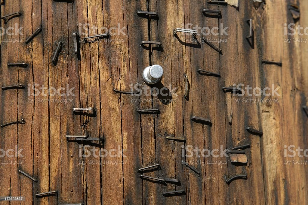Textured Wood Pole With Rusted Staples Background stock photo