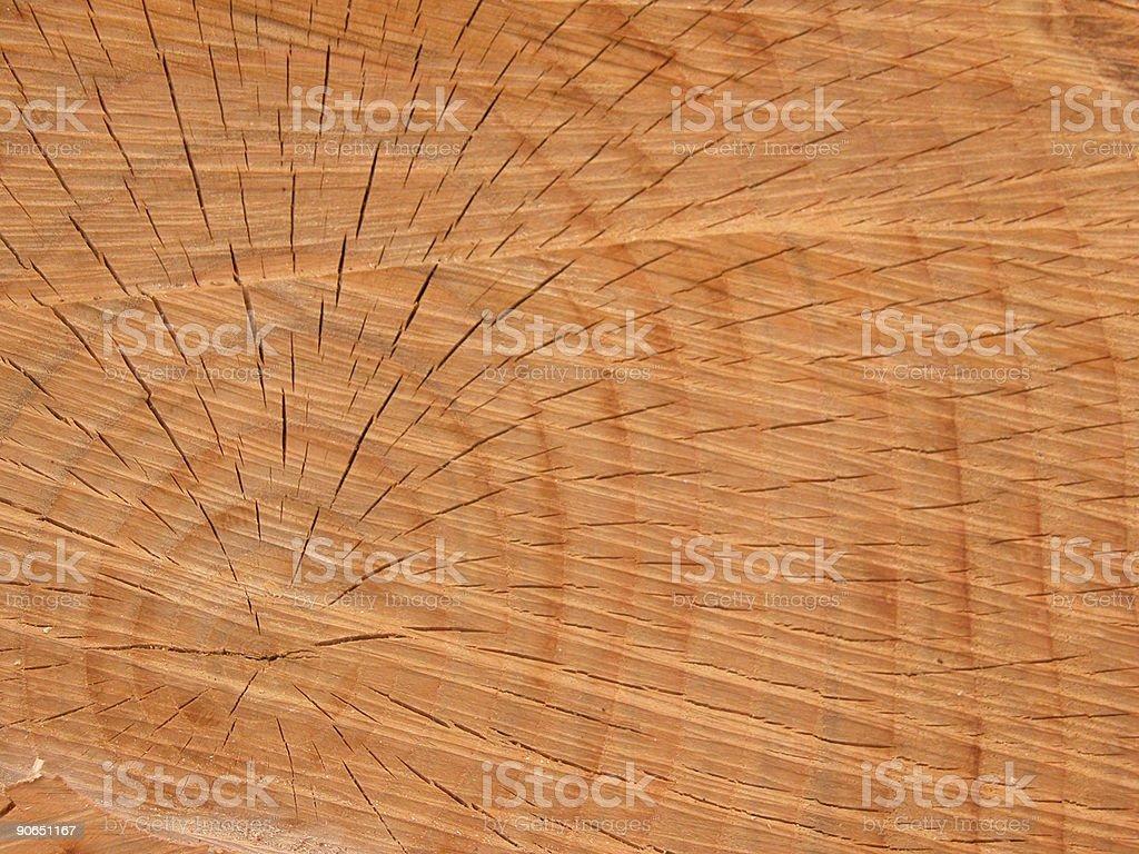 Textures : Wood , Circles royalty-free stock photo