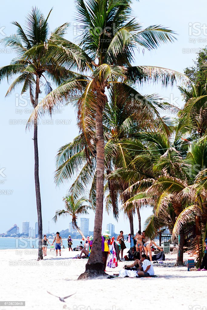 Thai and tourists around and under palm trees stock photo