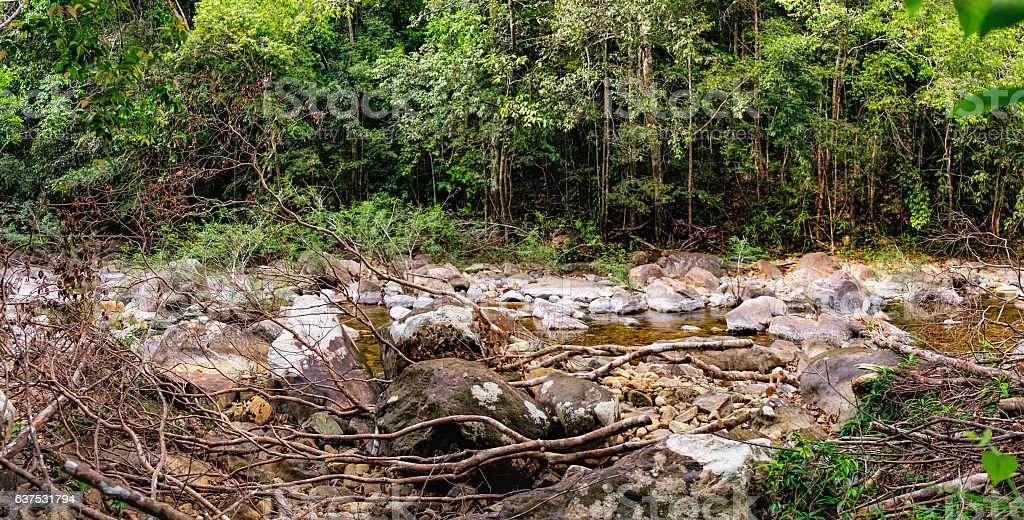 Thai dark tropical forest and rapid mountain river stock photo