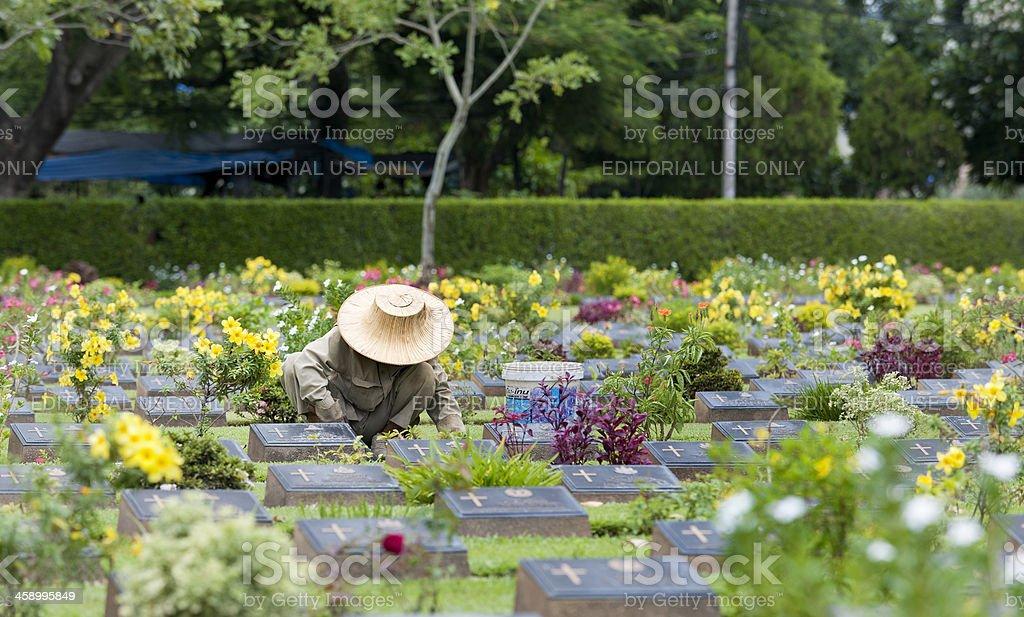 Thai gardener at work on war cemetery of Kanchanaburi Thailand royalty-free stock photo