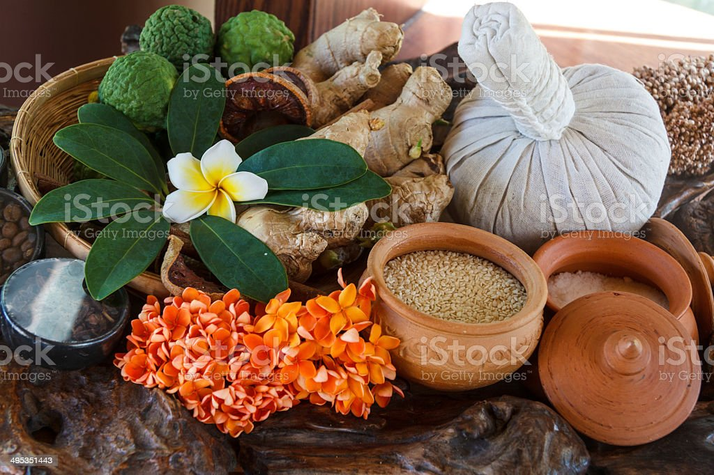 Thai Herb stock photo