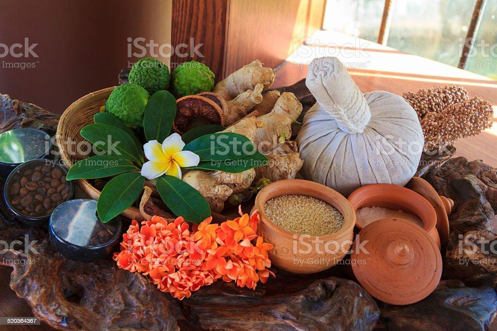 Thai Herb stock photo