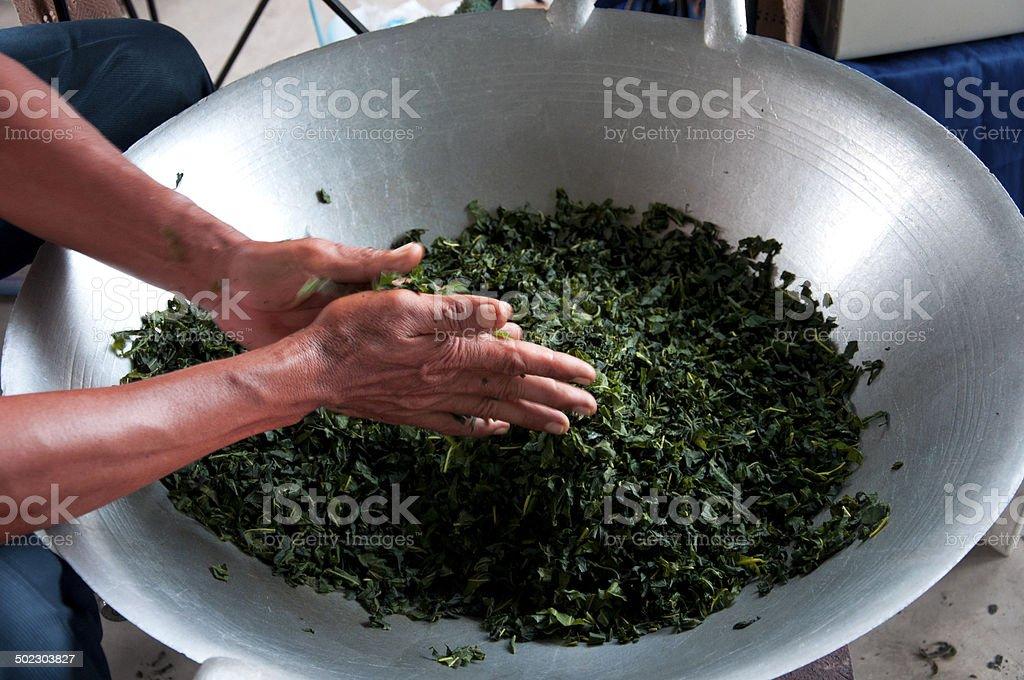 Thai Man Preparing Tea Leaves Chaing Mai,Thailand stock photo