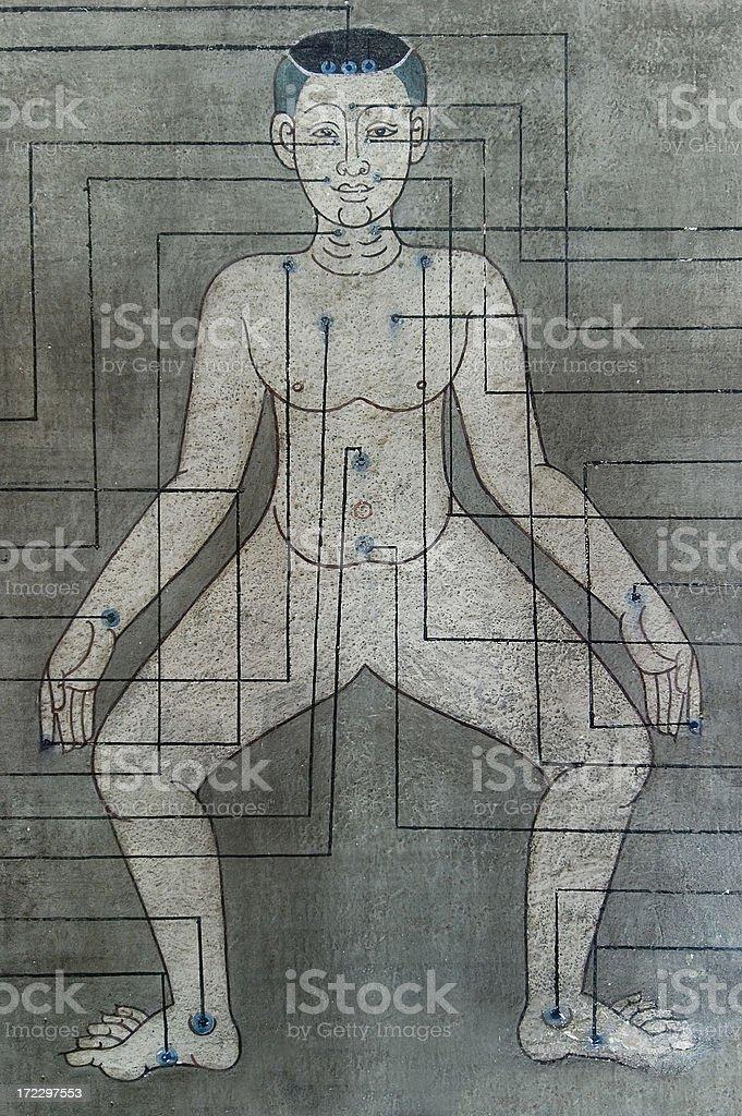Thai Massage Pressure Points royalty-free stock photo