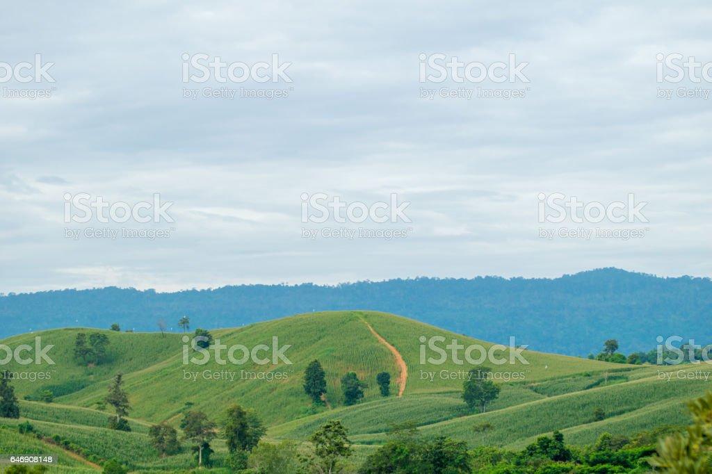 thai mountain view on Wang Nam Khiao,Nakhon Ratchasima,Thailand stock photo