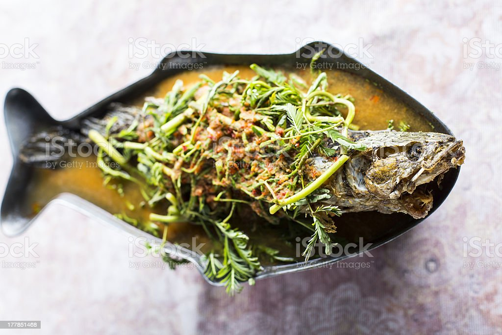 Thai sour curry with snake headed fish royalty-free stock photo