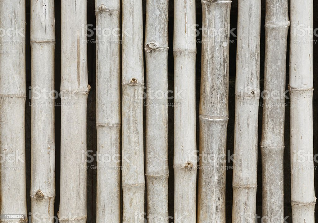 thai style bamboo fence royalty-free stock photo