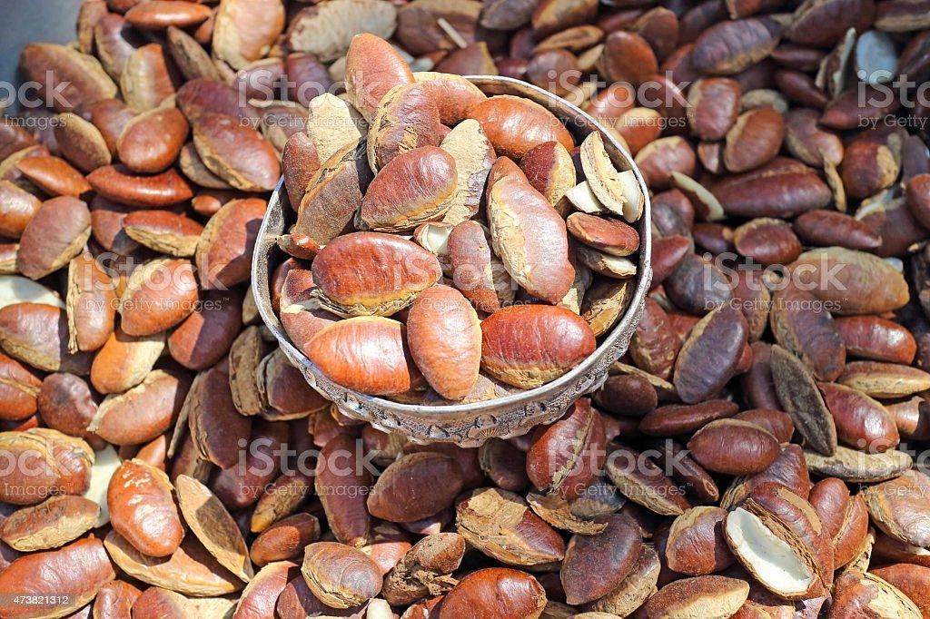 Thailand irvingia stock photo