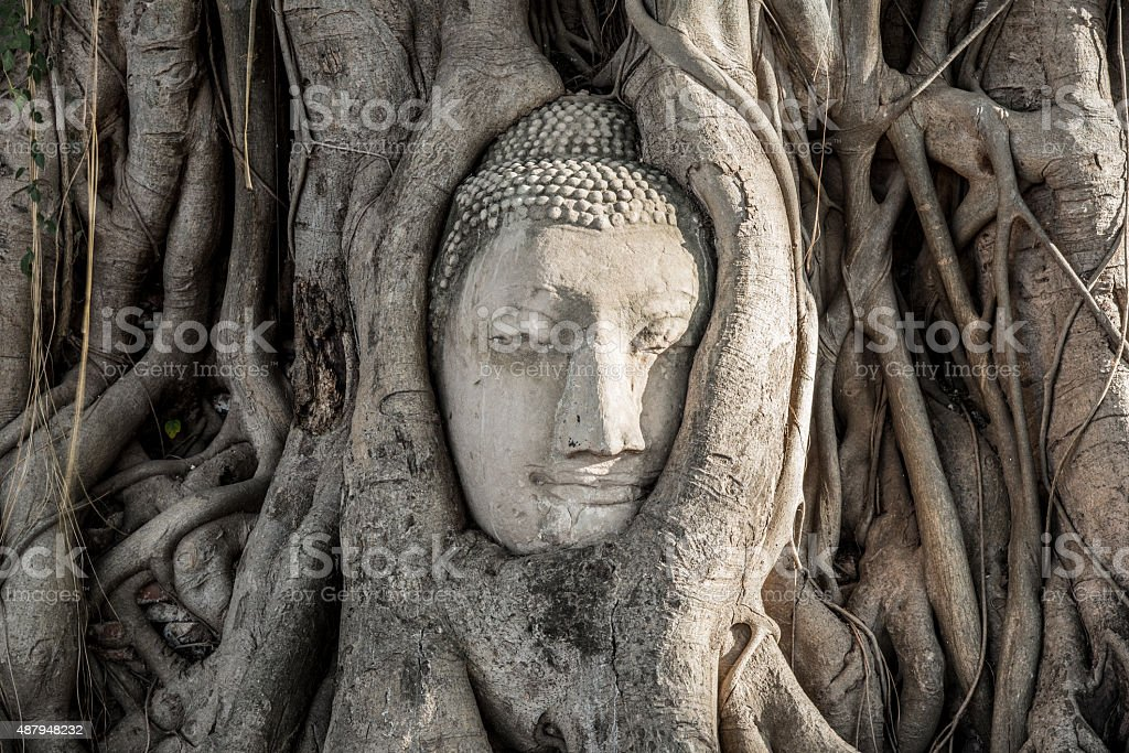 Thailand temple Wat Mahathat, Ayutthaya stock photo