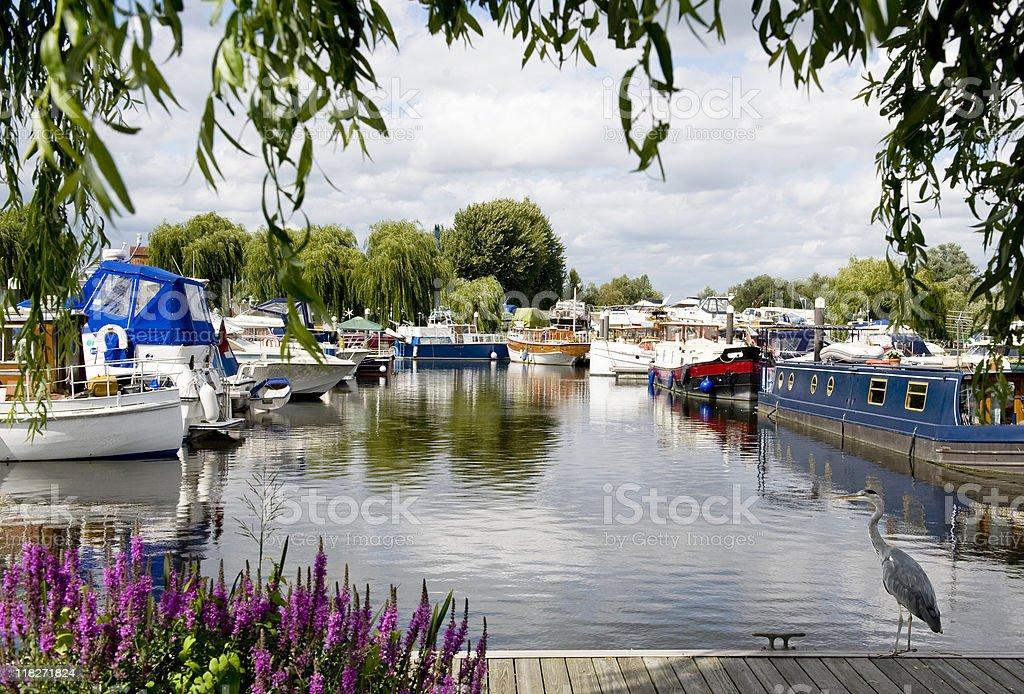 Thames Marina stock photo
