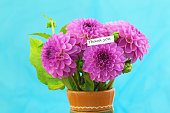 Thank you card with pink dahlia bouquet