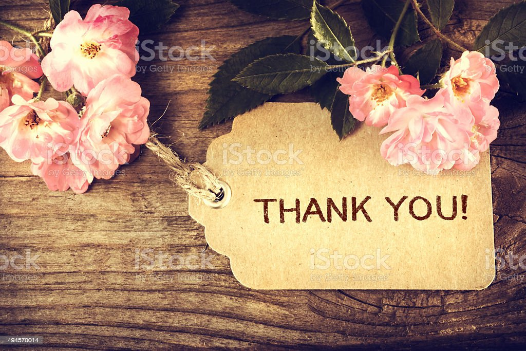 Thank You message with small roses stock photo