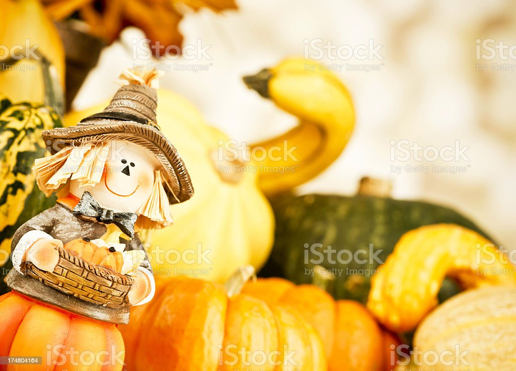 Thanksgiving Arrangement with Scarecrow royalty-free stock photo
