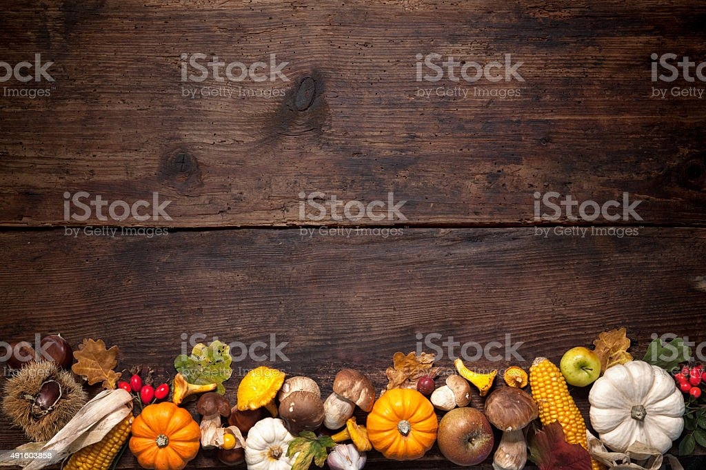 Thanksgiving background stock photo