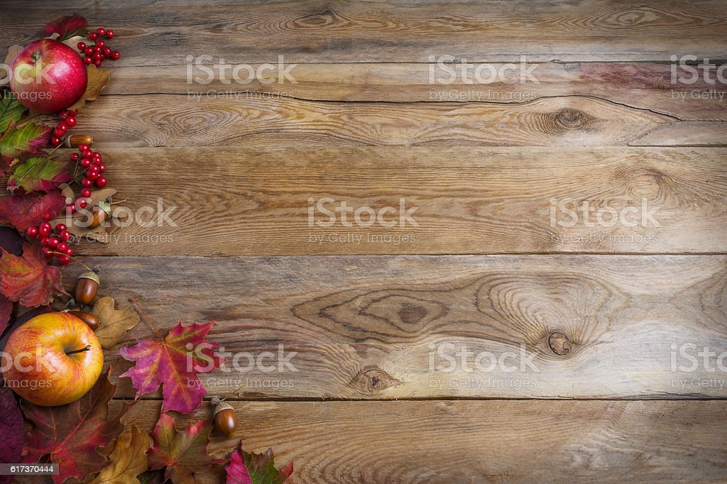 Thanksgiving background with apples, acorns, red berries and fal stock photo