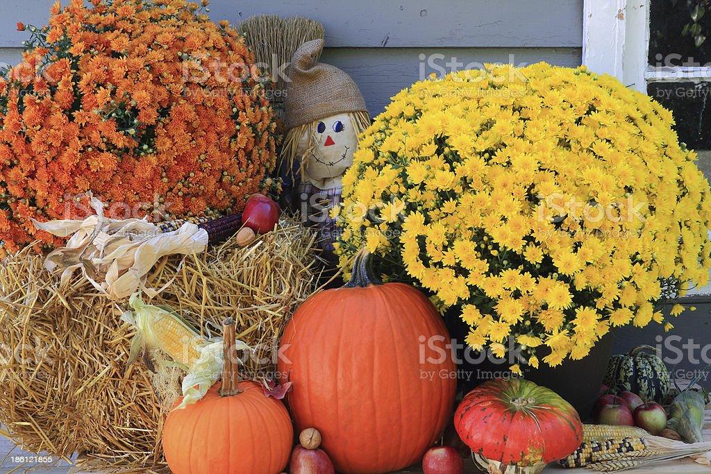 Thanksgiving Decoration stock photo