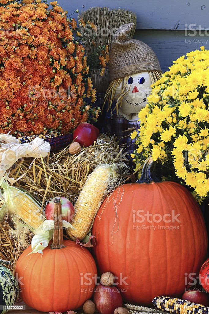 Thanksgiving Decoration - vertical orientation stock photo
