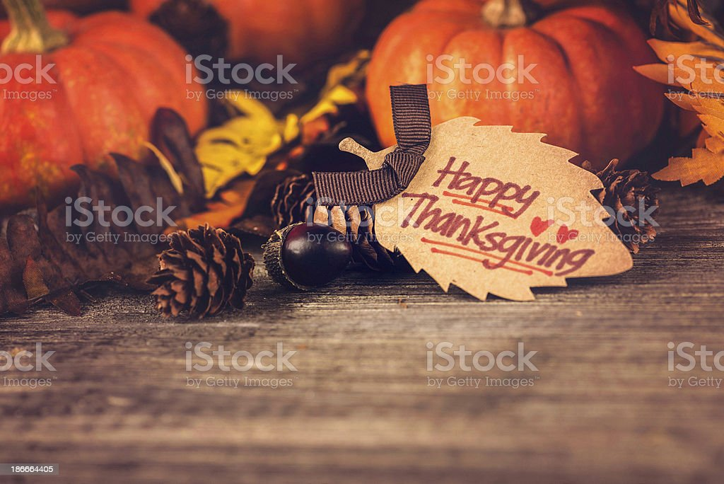 Thanksgiving Decorations royalty-free stock photo