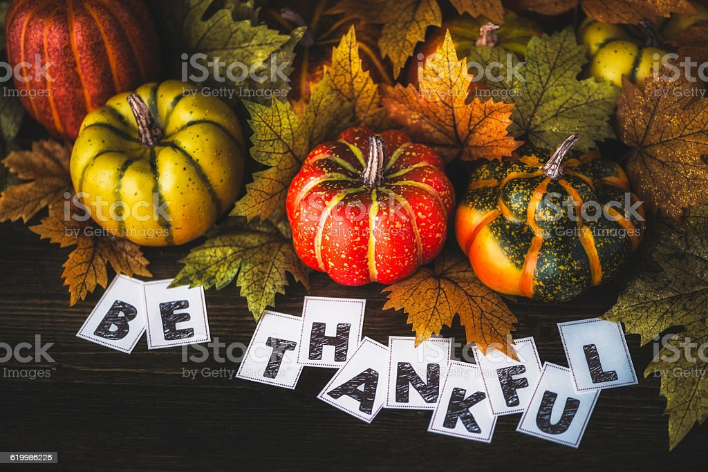 Thanksgiving fall arrangement with pumpkins, leaves and thank you message stock photo