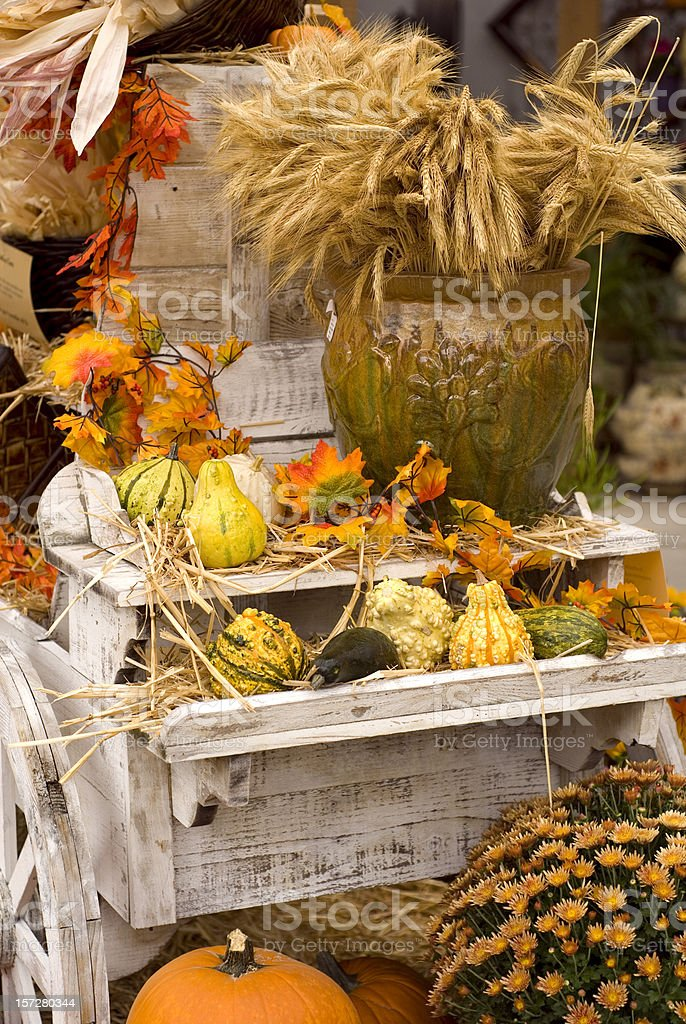 Thanksgiving & Halloween Background, Autumn Flower and Vegetable Cart royalty-free stock photo