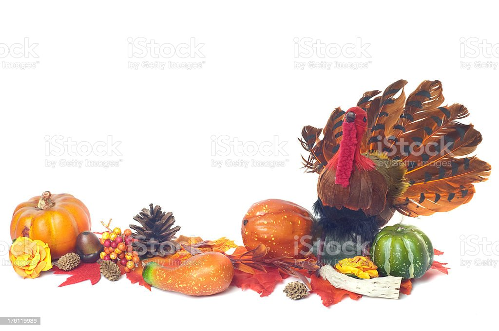 Thanksgiving royalty-free stock photo