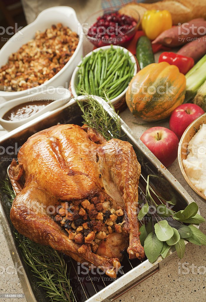 Thanksgiving Roast Turkey Dinner with Stuffing, Cranberries, Potato and Vegetables stock photo
