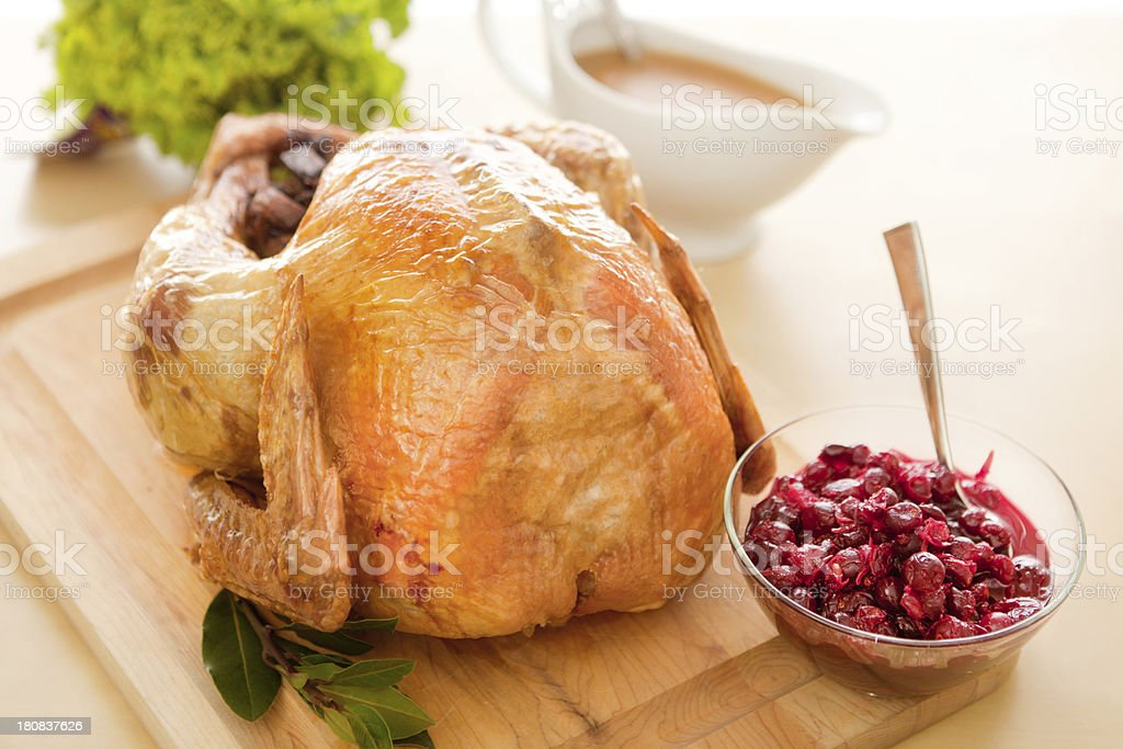 Thanksgiving Roasted Turkey and Gravy Horizontal with Copy Space royalty-free stock photo