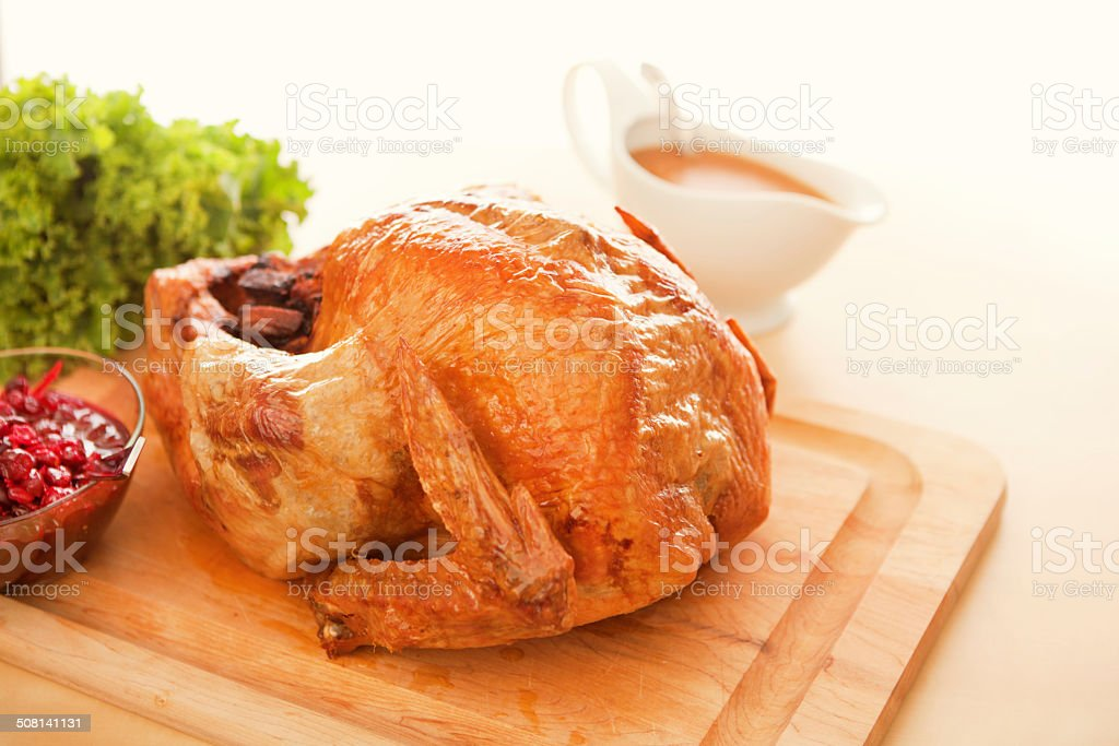 Thanksgiving Roasted Turkey with Cranberry Sauce and Gravy on White royalty-free stock photo