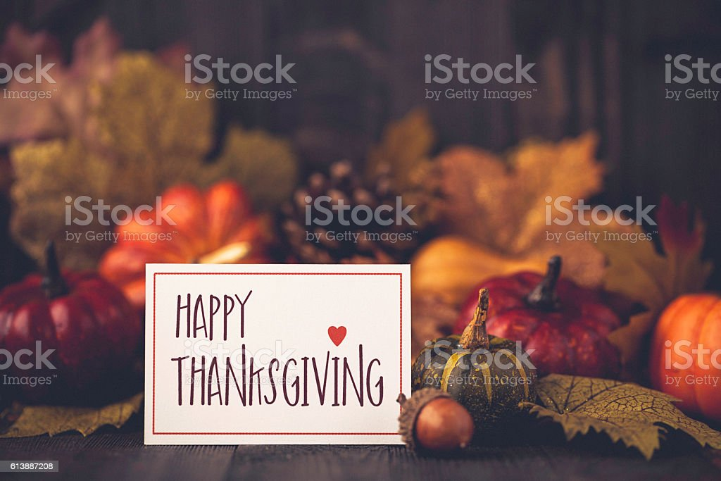 Thanksgiving still life background with pumpkins, acorns and message stock photo